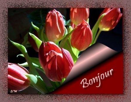 http://hindo01.h.i.pic.centerblog.net/u7wzndjn.jpg